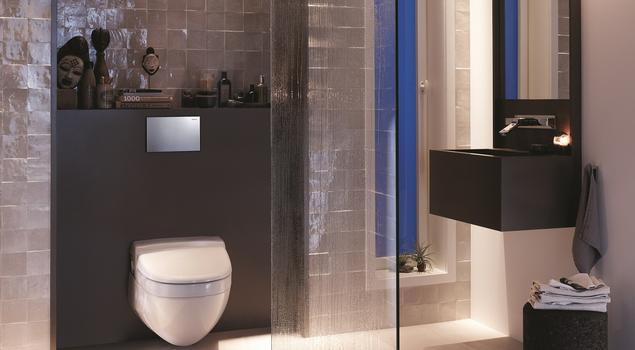 Jaki przycik spłukujący wybrać do toalety?